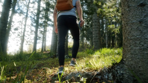 person walking in woods
