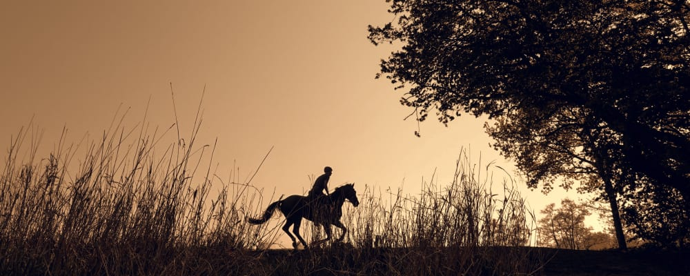 silhouette of horse rider against sunset sky. Equestrian Sammy was airlifted twice by Devon Air Ambulance