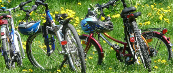 Row of family bicycles parked in a meadow